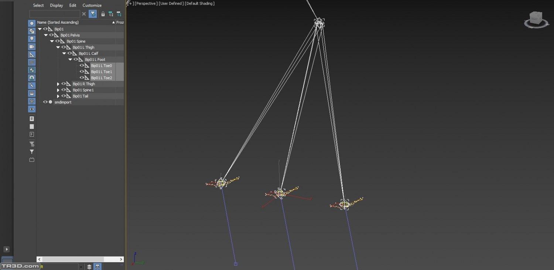 Model Kemik Animasyon Problemi