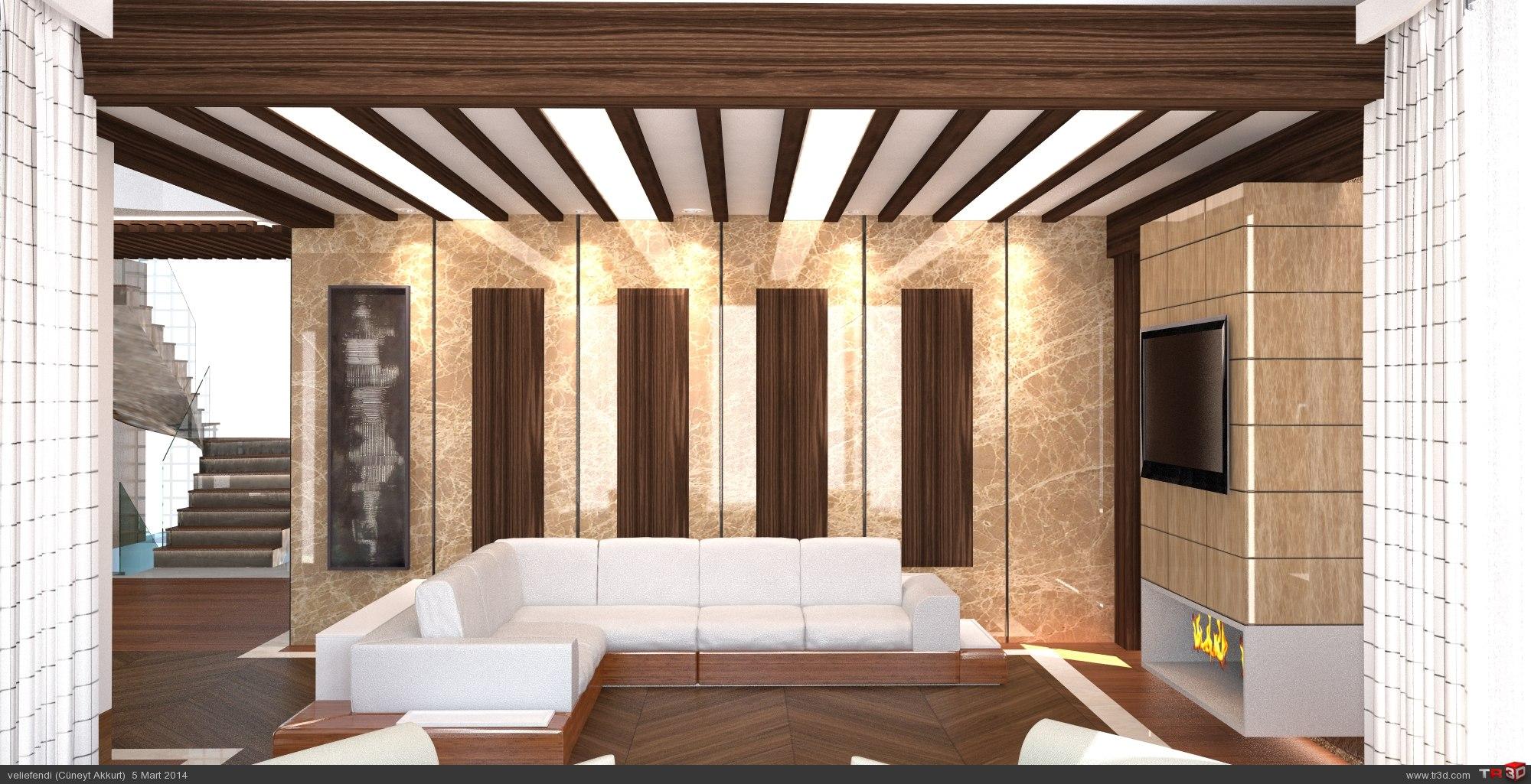 Villa Tasarımı 2