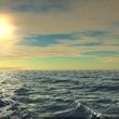 Eminibo Deniz animasyonu
