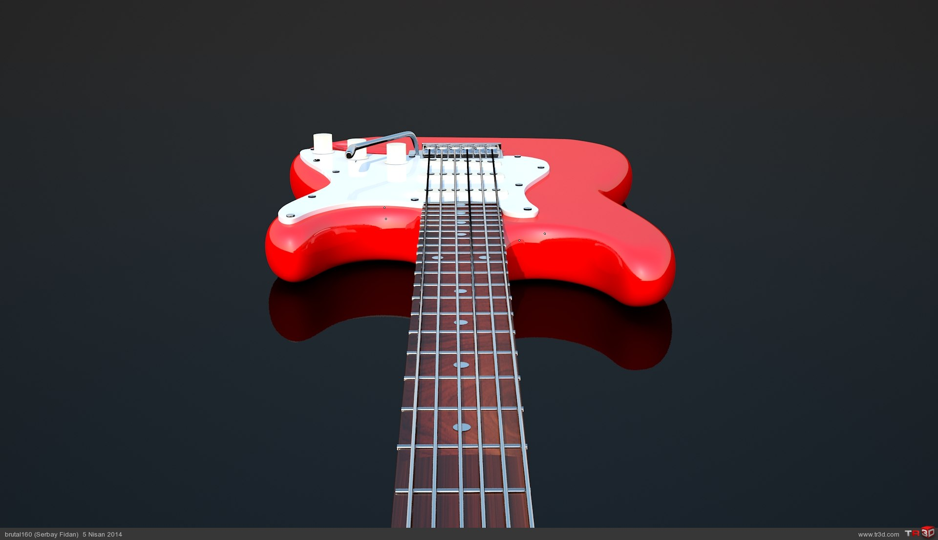 Strat Gitar 1