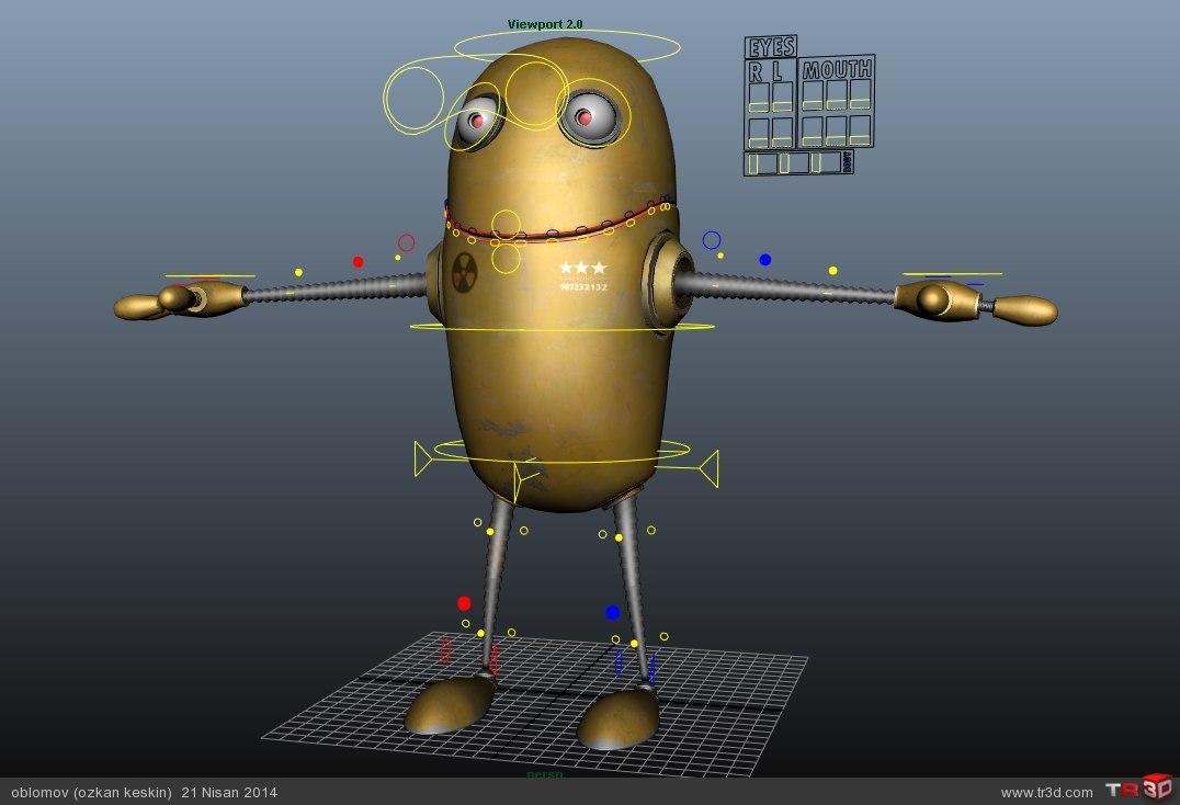 Organik Robot 1