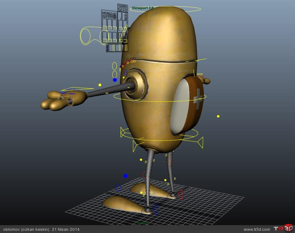 Organik Robot 2