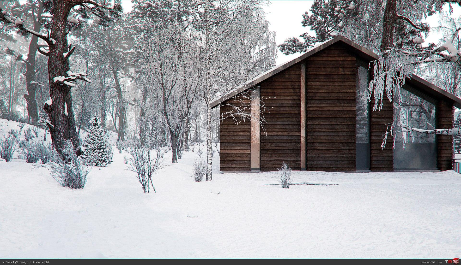 Ahsap orman evi
