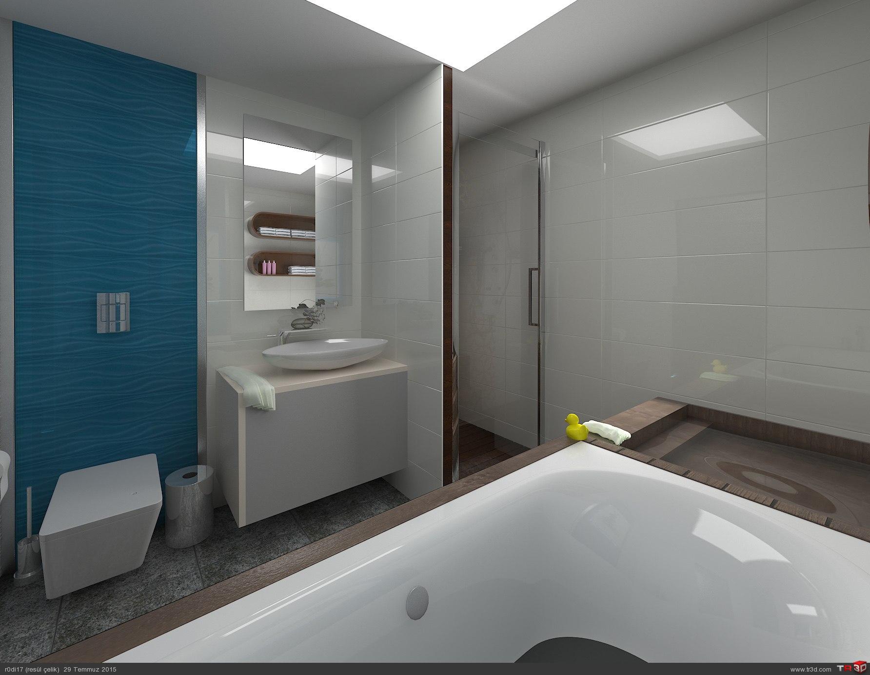 Banyo Çalışması. 1