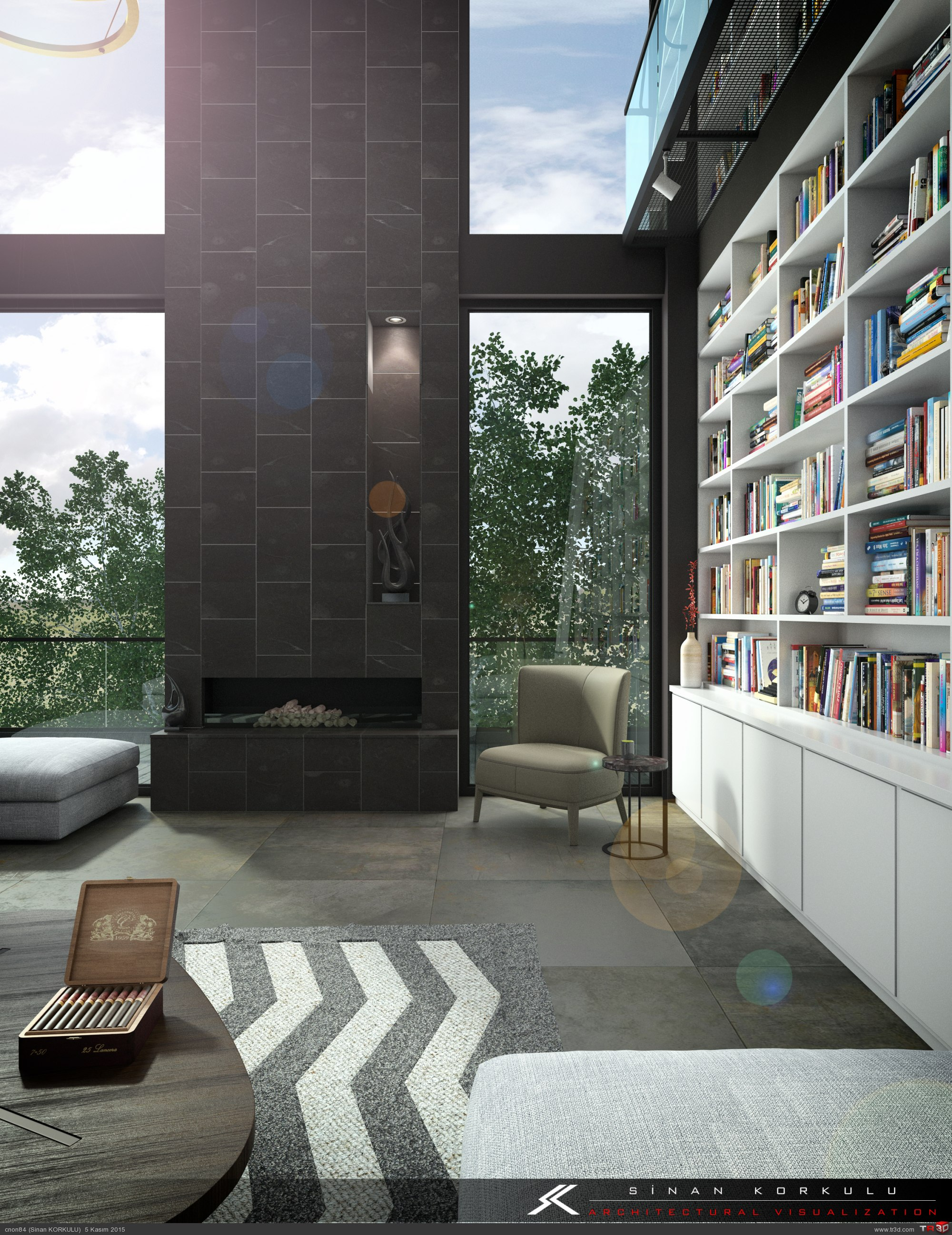 LIVING ROOM & LIBRARY 2