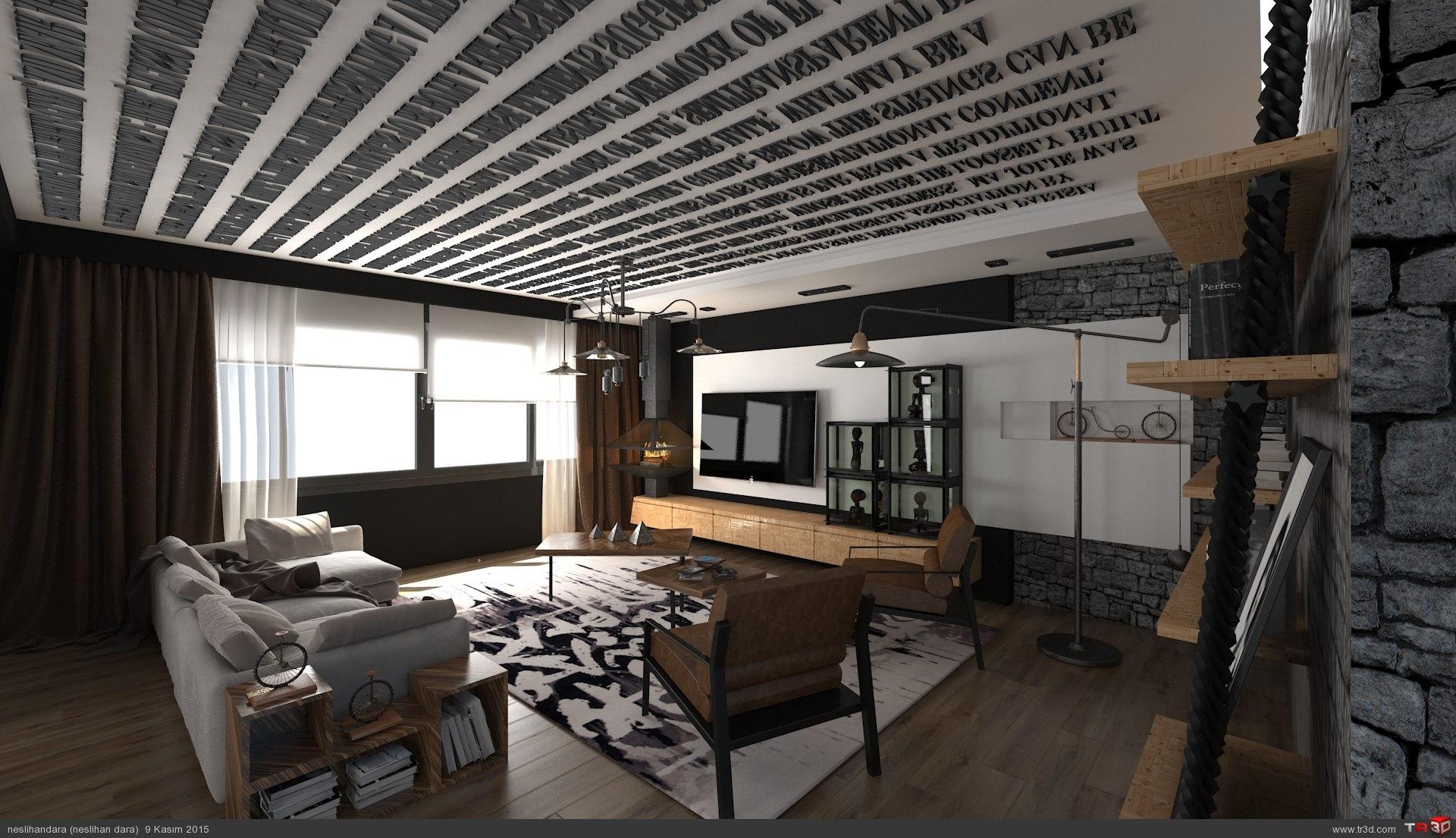 Loft House  1
