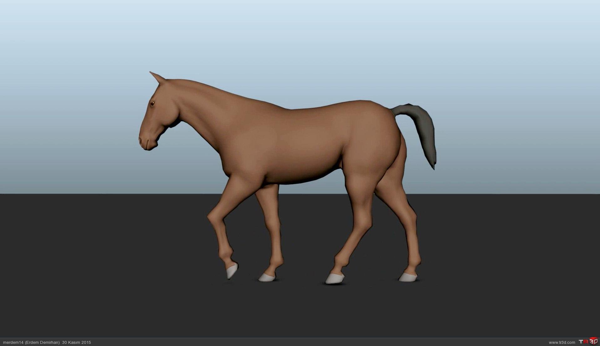 At Yürüme Animasyonu