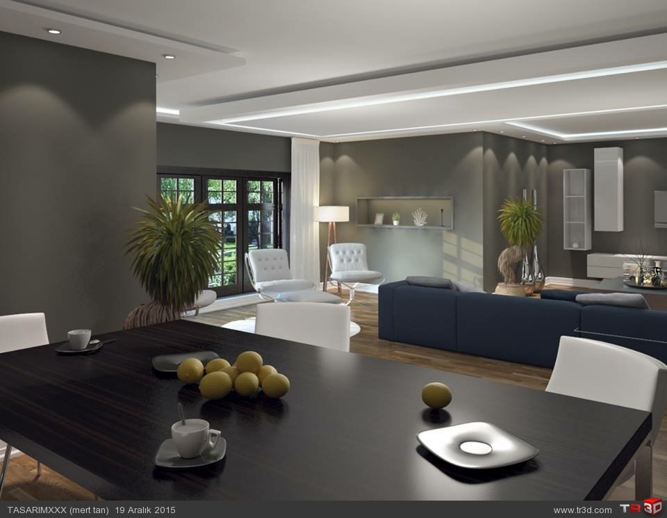 Mimari salon tasarımı