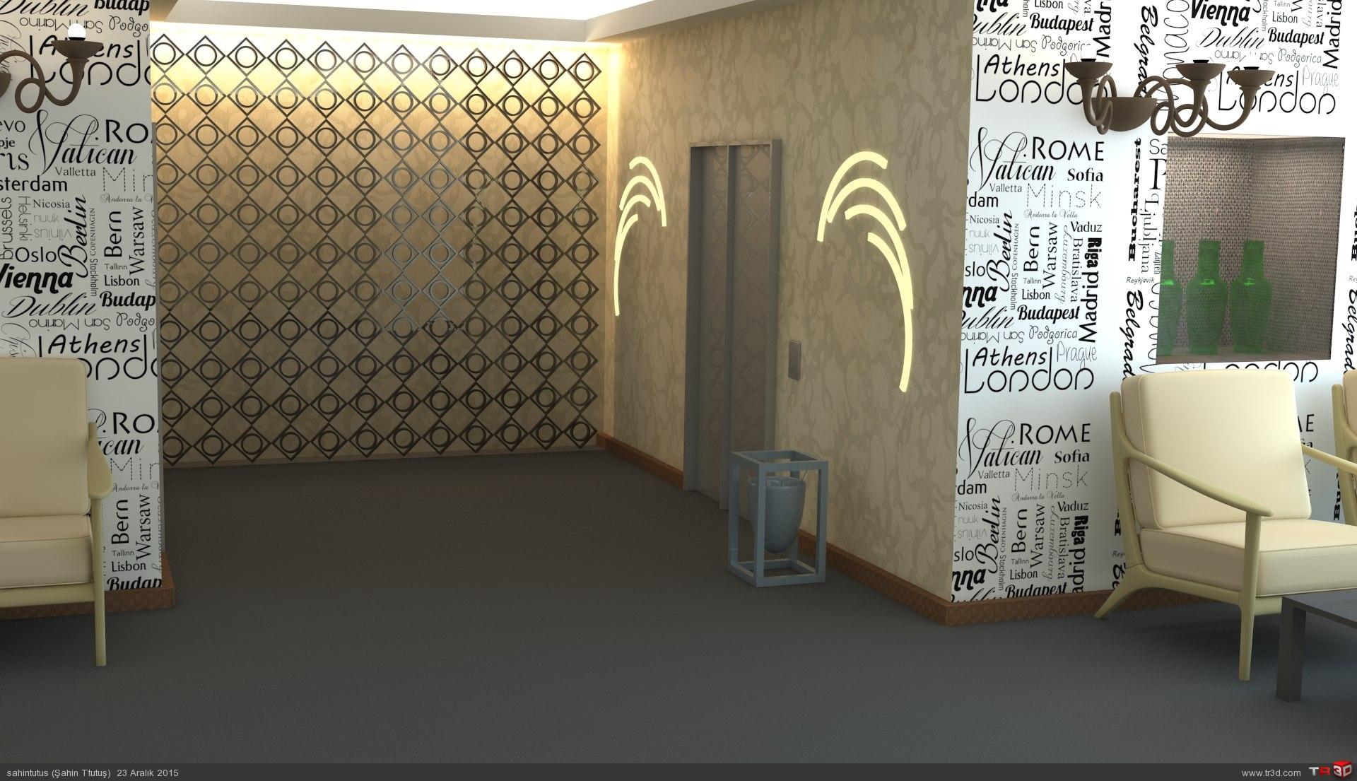 Asansör hol