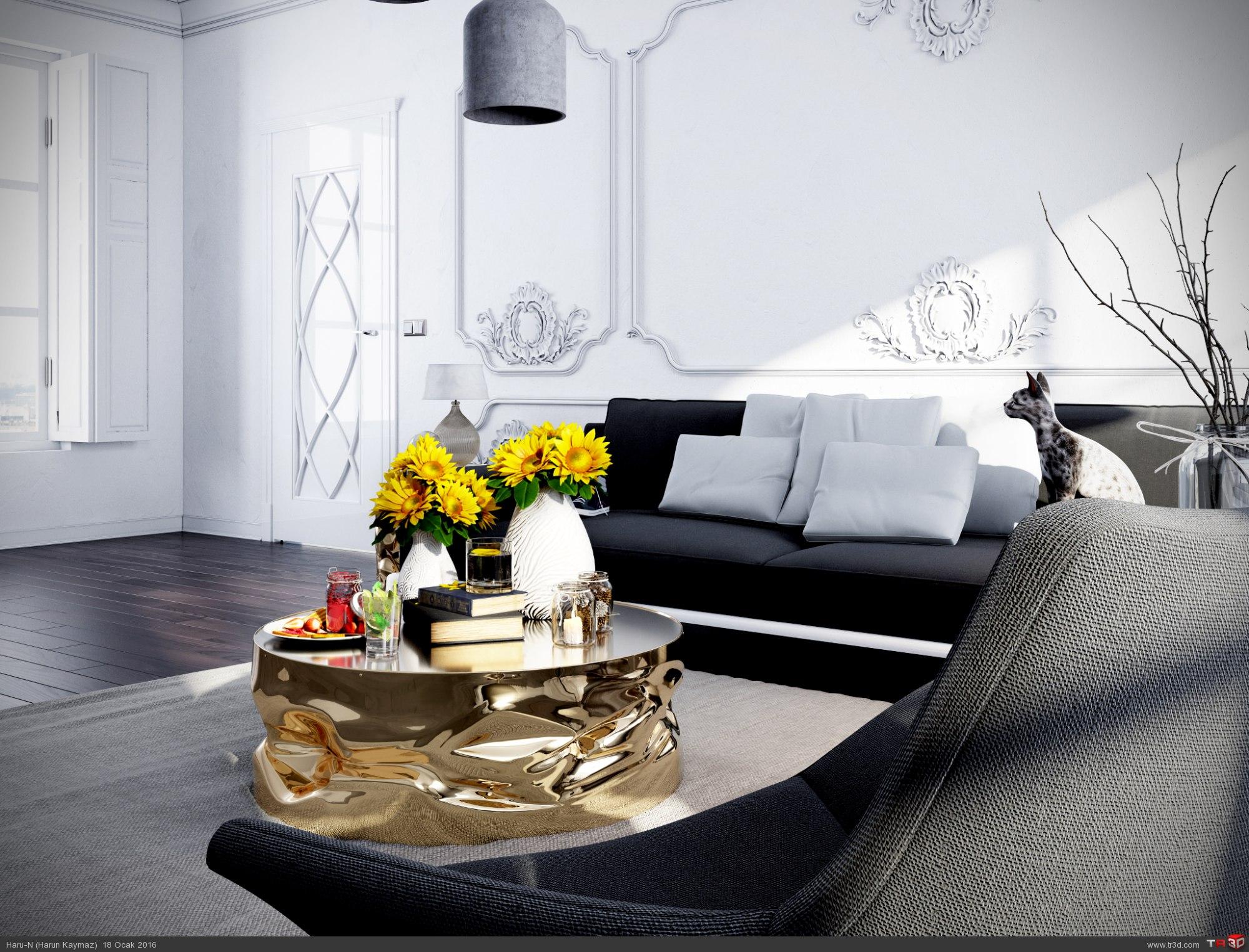 Klasik oturma odası 2