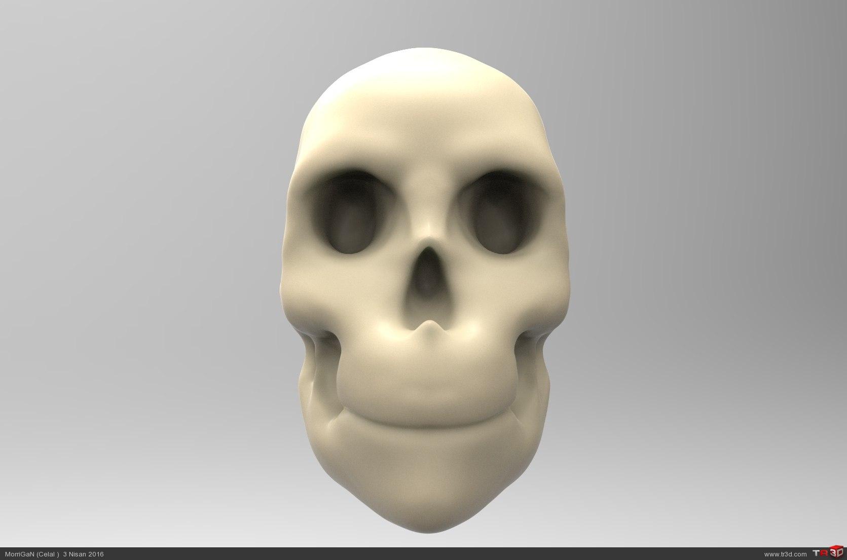 Kafatası 1