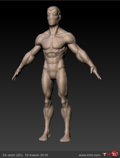 anatomy eskizi