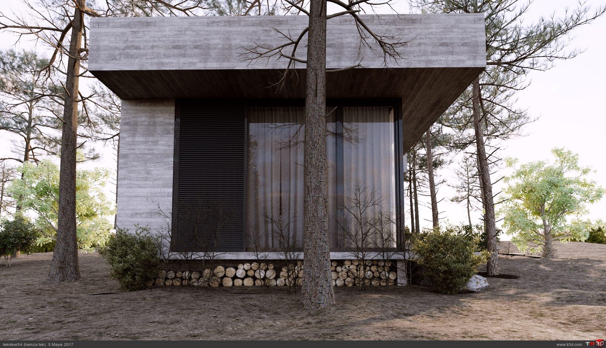 orman evi 1