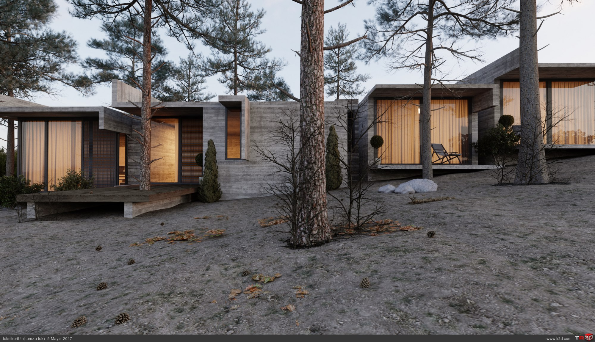 orman evi 2