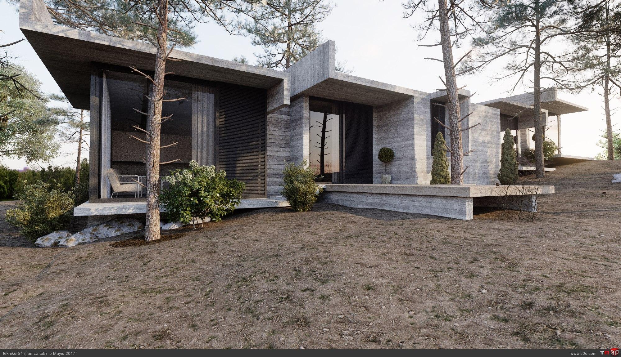 orman evi 3