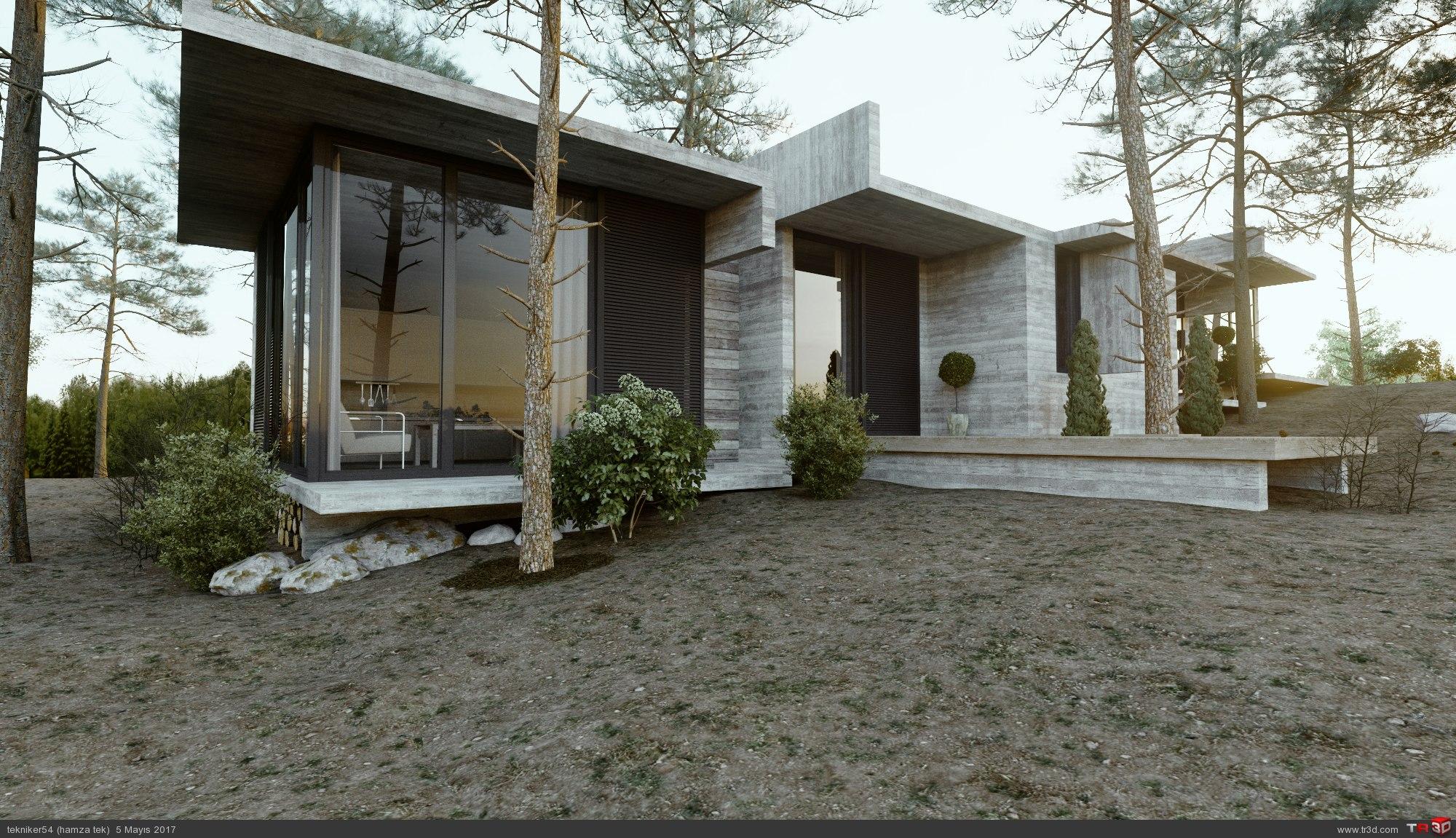 orman evi 4