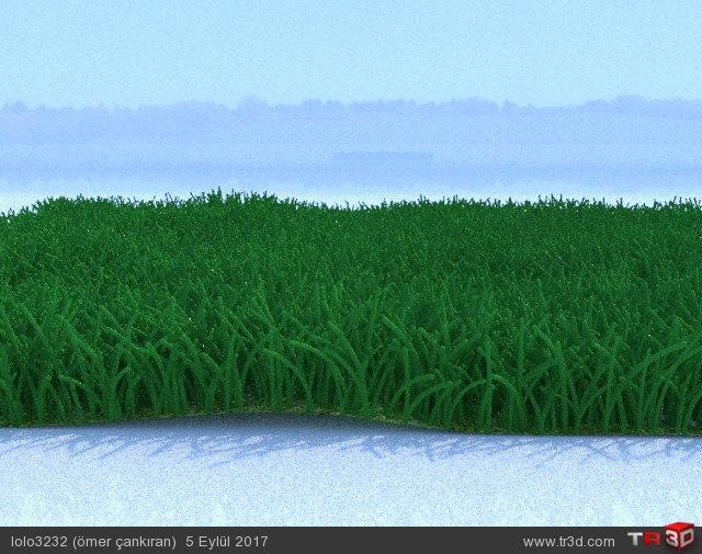 Realistic Grass 2