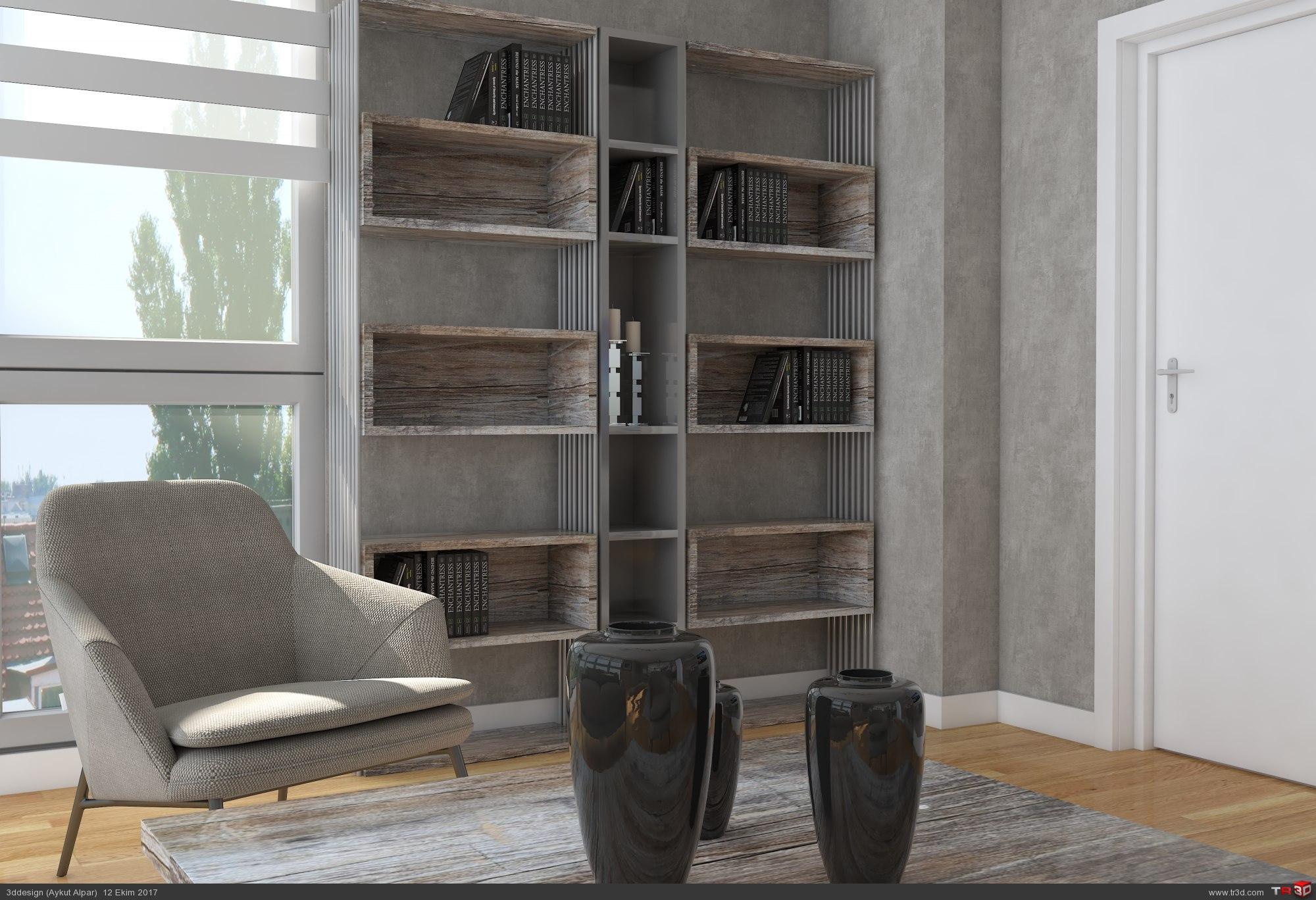 Home concept 1