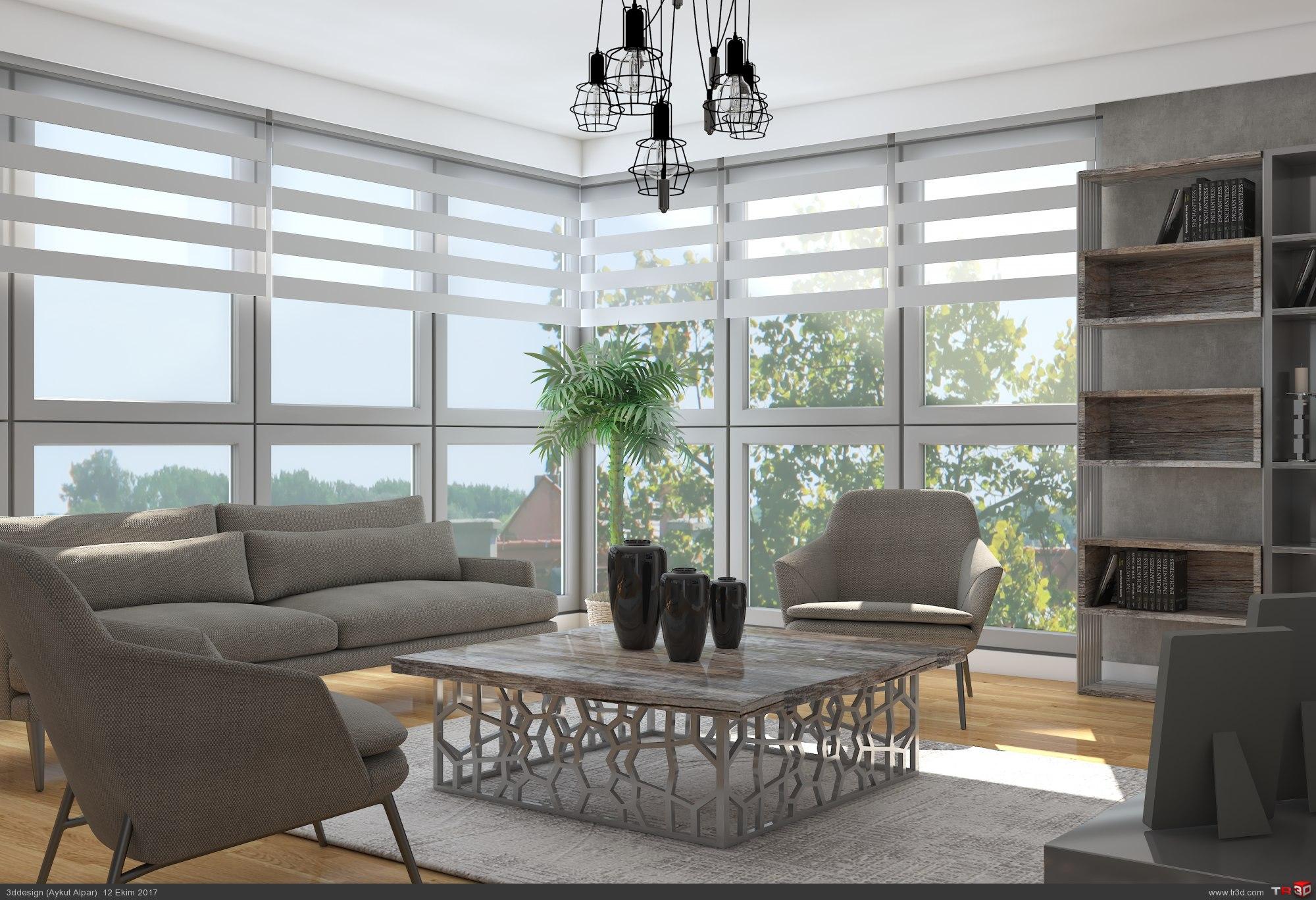 Home concept 2