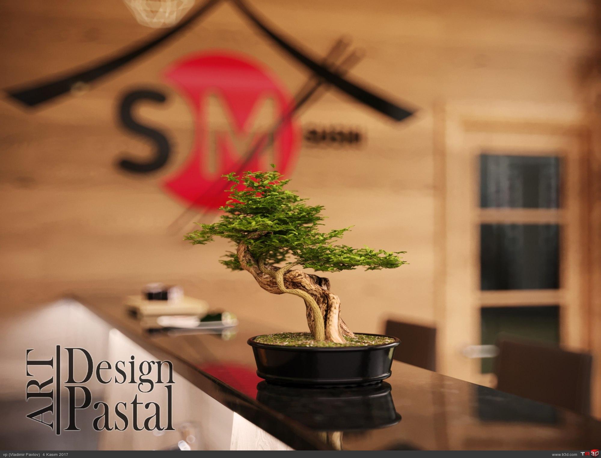 SM Sushi Bar Dizayn