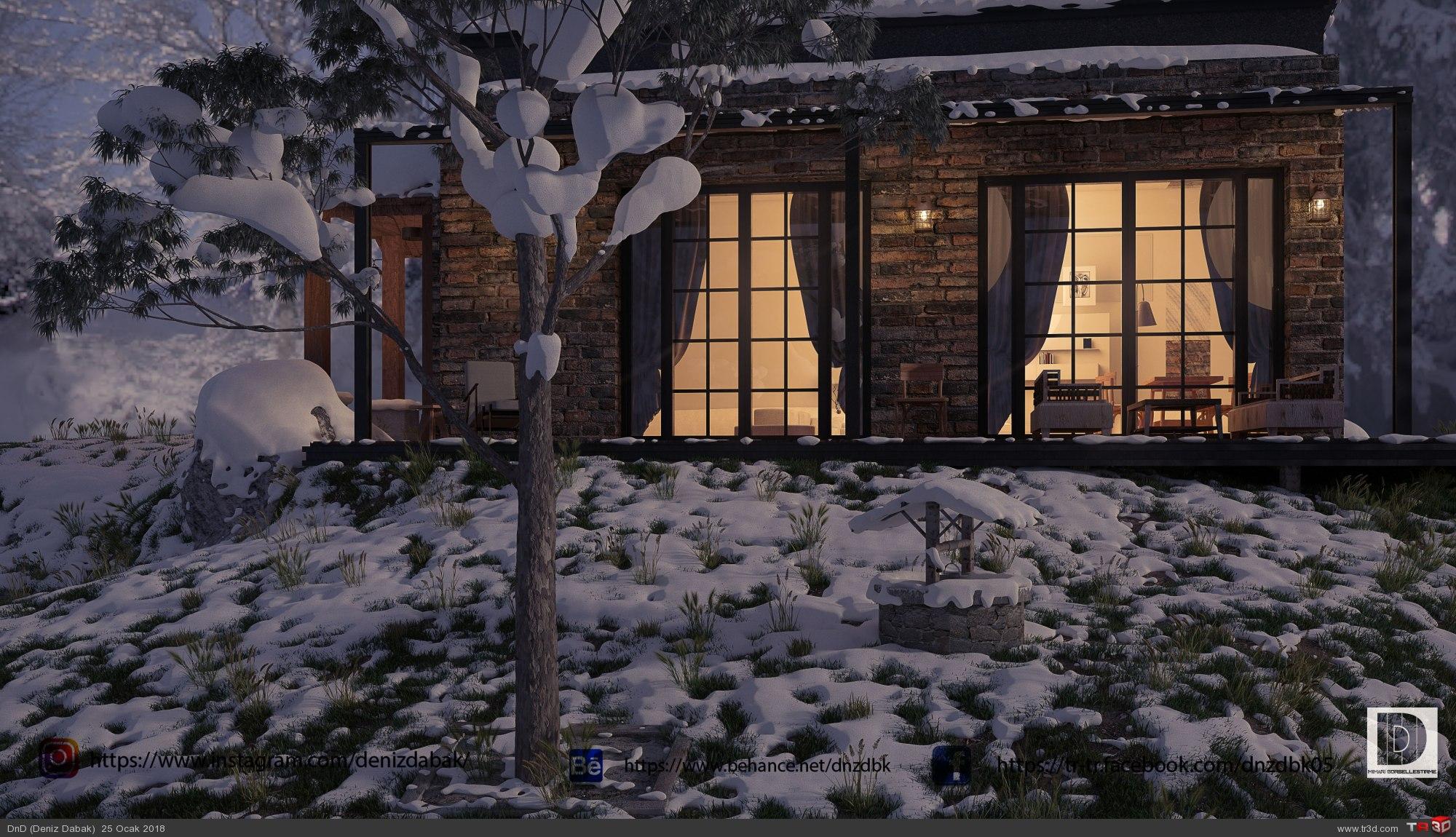 Mountain Lake House 3