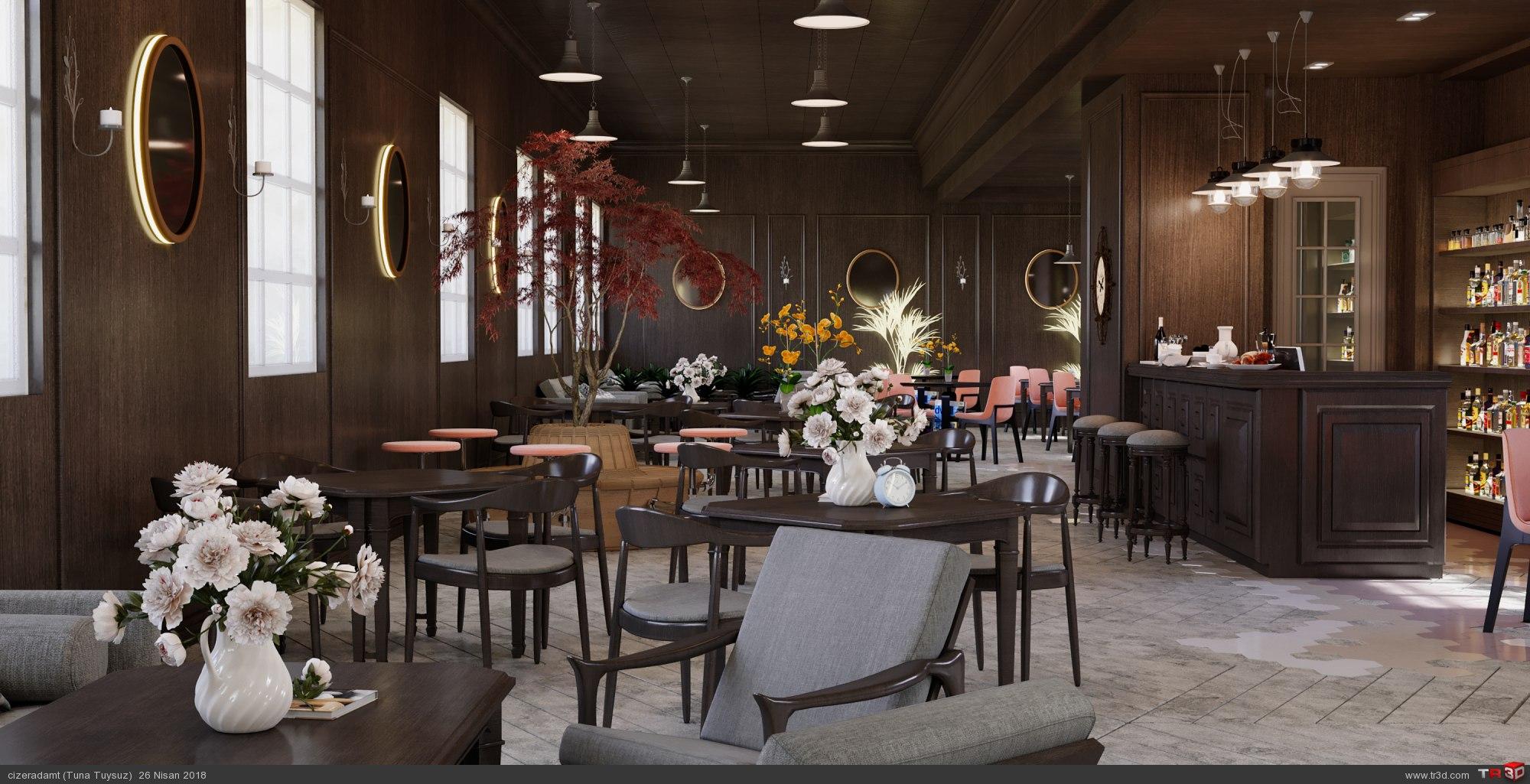 Anadolu Roma Enstitüsü Cafe Tasarımı 1