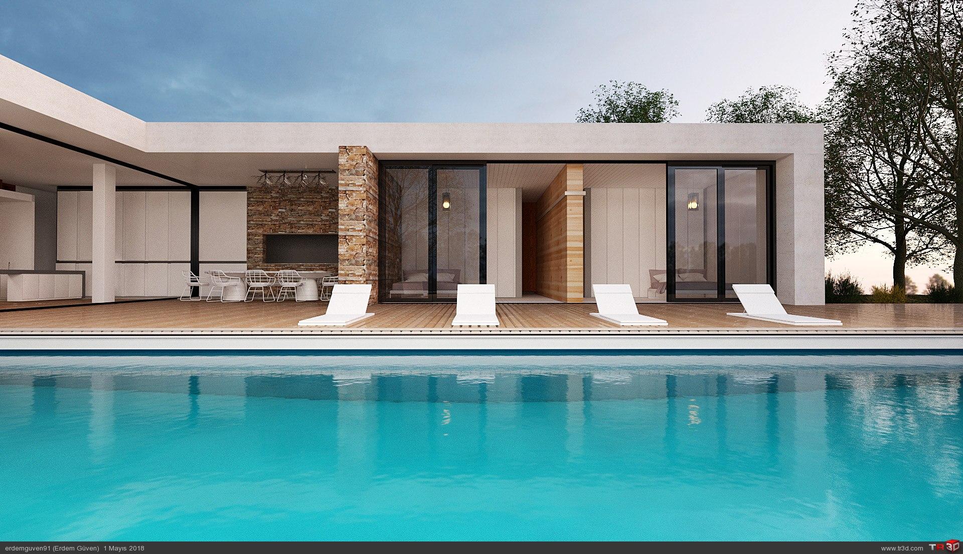 Minimalist Villa 3