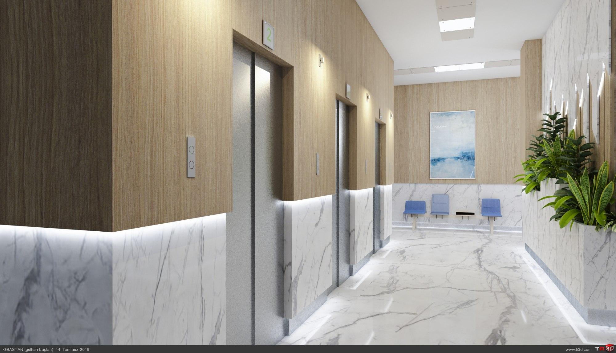 Dubai hastane  2