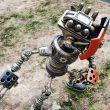 Sevimli Robot