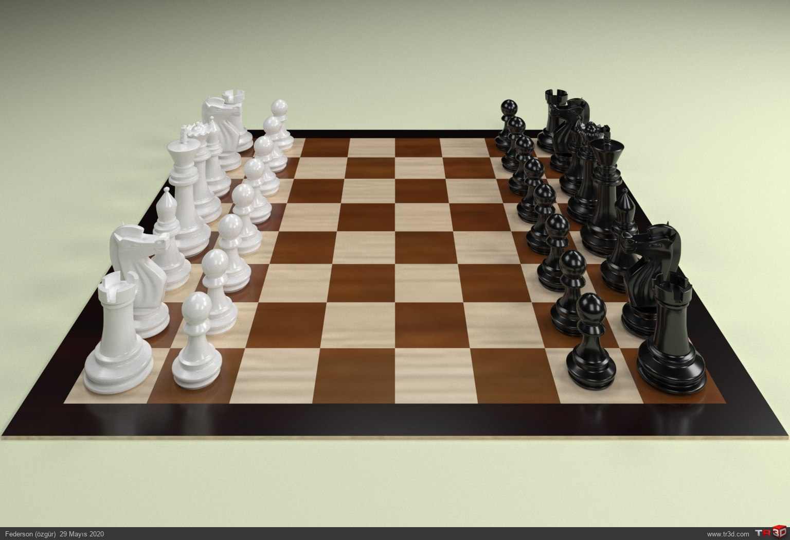 satranç takımı 1