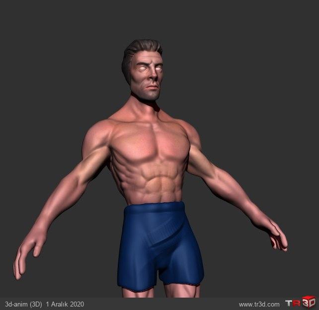anatomy calısma 1
