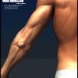 Male character modeling(Erkek karakter modelemesi)