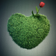 Çimden kalp