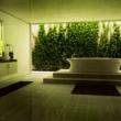 Yeşil Banyo