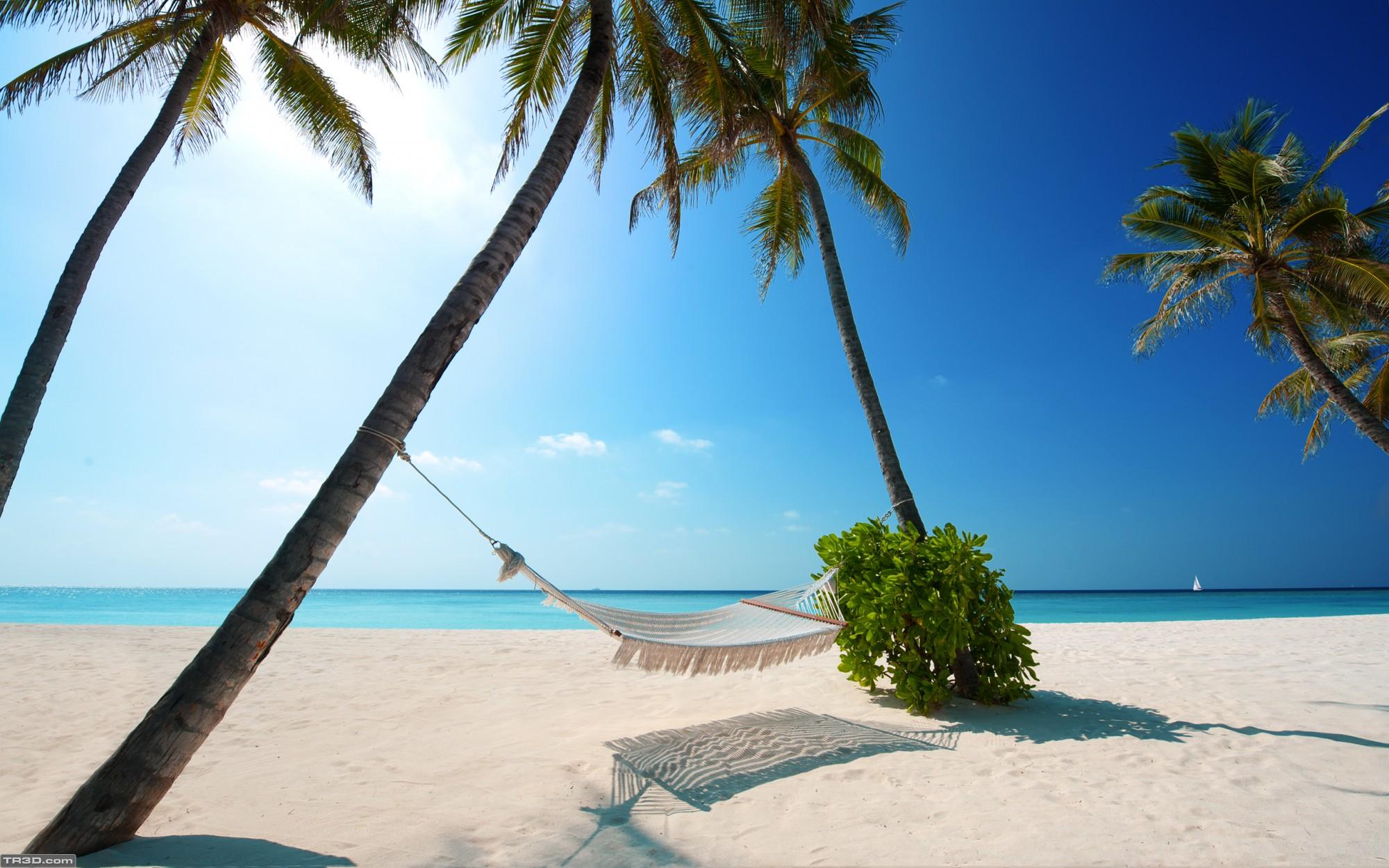 Hamak ve tatil ve deniz ve kum ve güneş