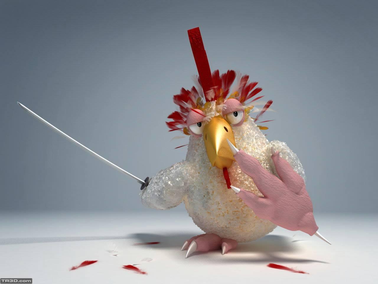 Savaşçı tavuk